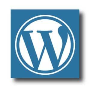 בניית אתרי וורדפרס לעסקים - DMYB