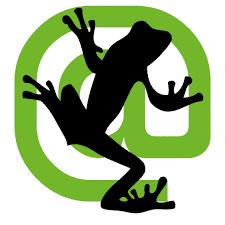 Screaming frog - DMYB